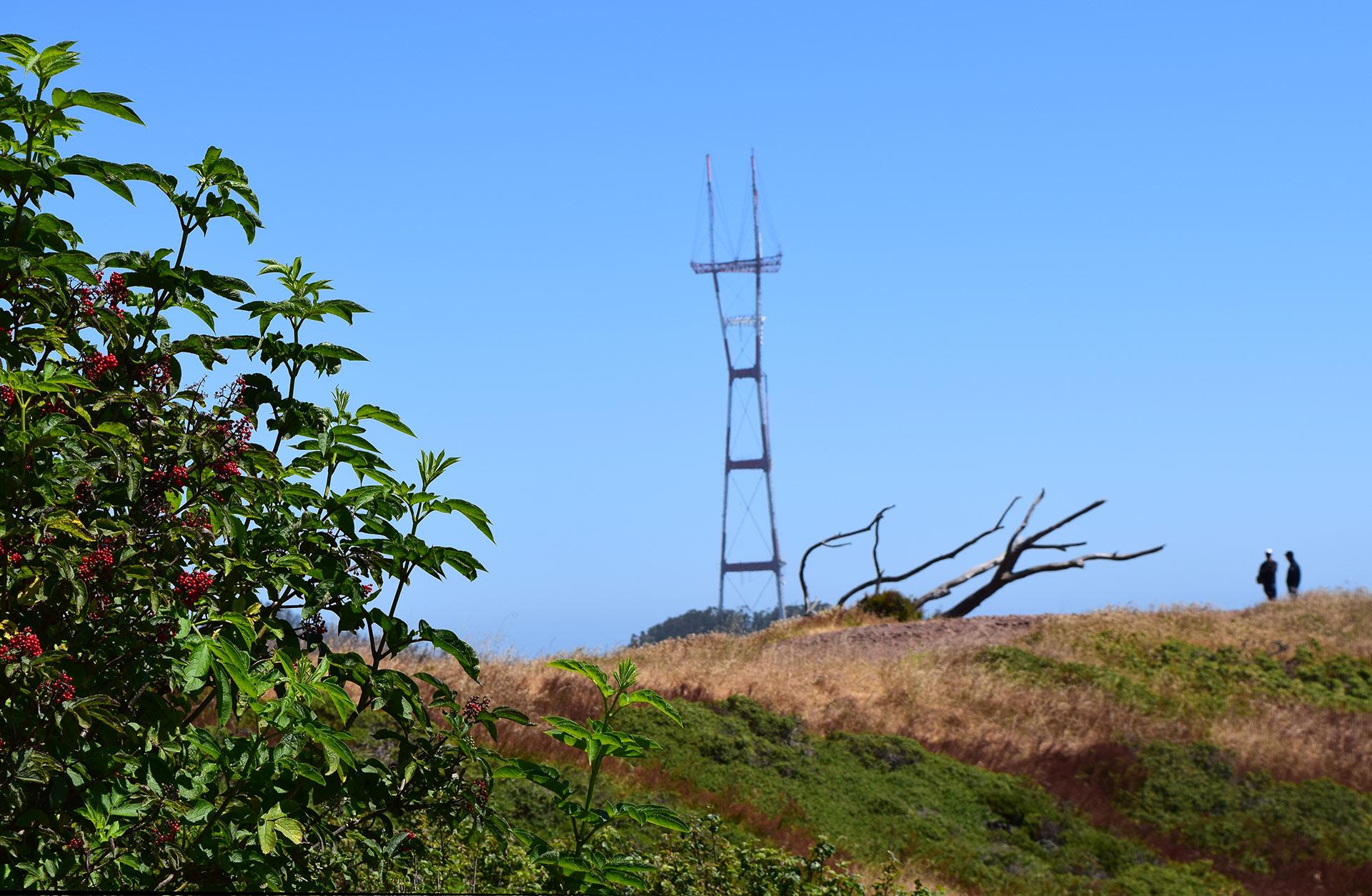 Mount Davidsonilta näkee yhden San Franciscon maamerkin: Sutro Towerin. Kuva: Reetta Kemppi