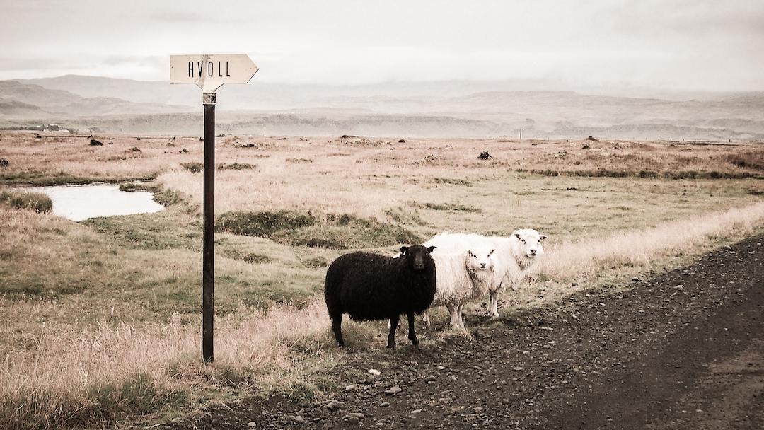"""Hvoll, rauhallinen maaseutuhostelli keskellä """"ei yhtään mitään"""". Kuva: Lenny K Photography / CC Flickr."""