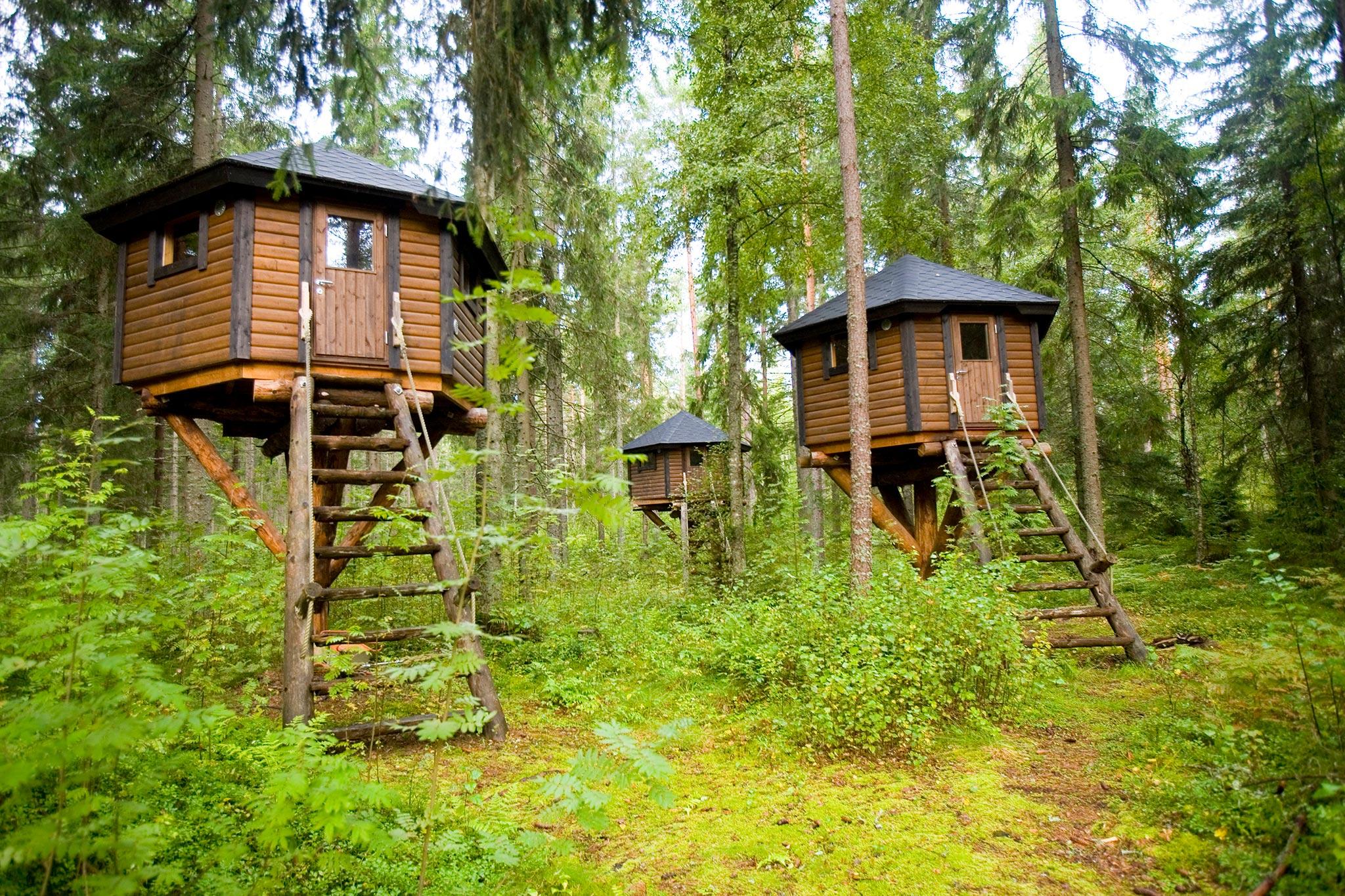© Storfinnhova Gård, metsäkylä