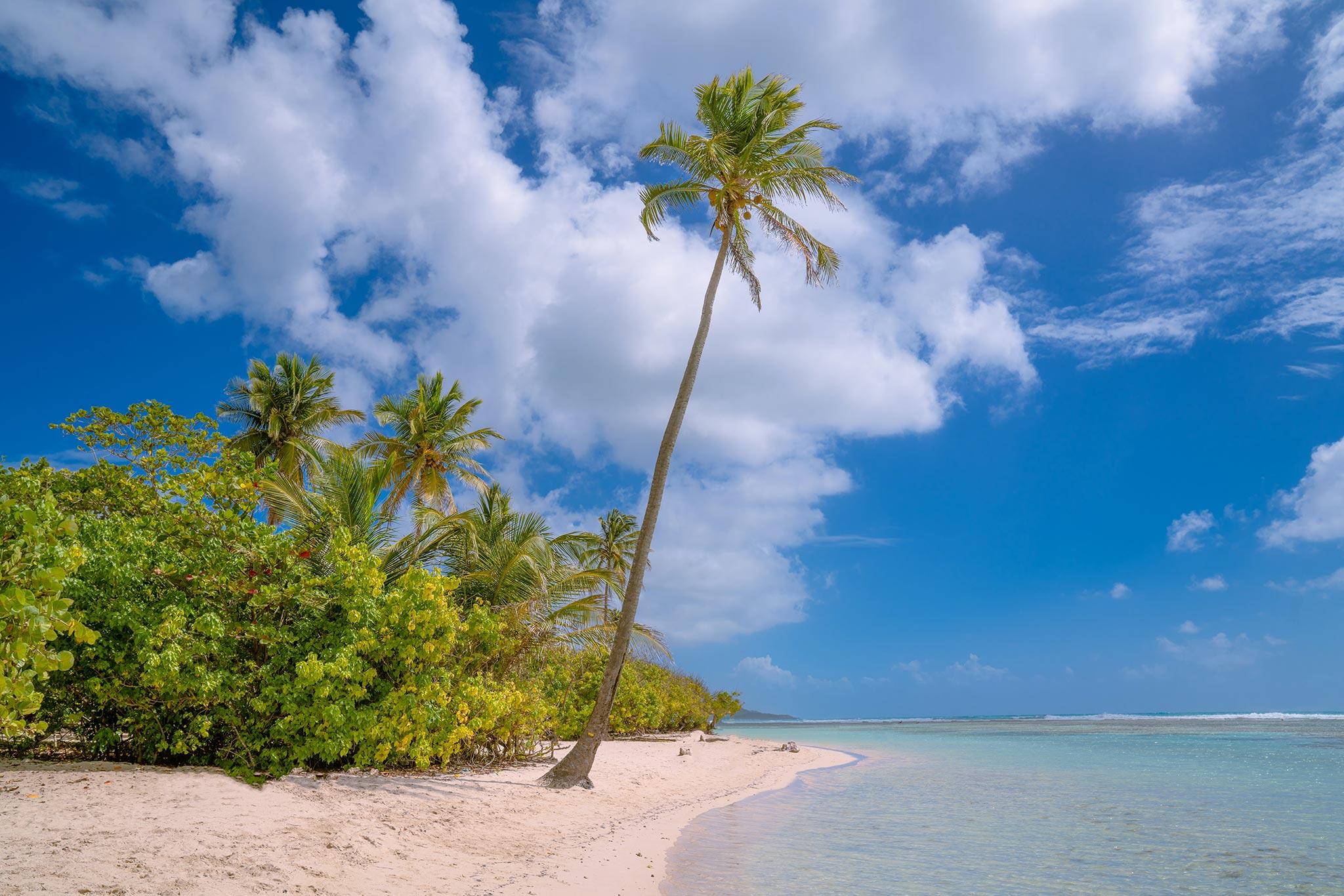 Guadeloupe houkuttelee rannoillaan. Kuva: Hakan Tas, Unsplash
