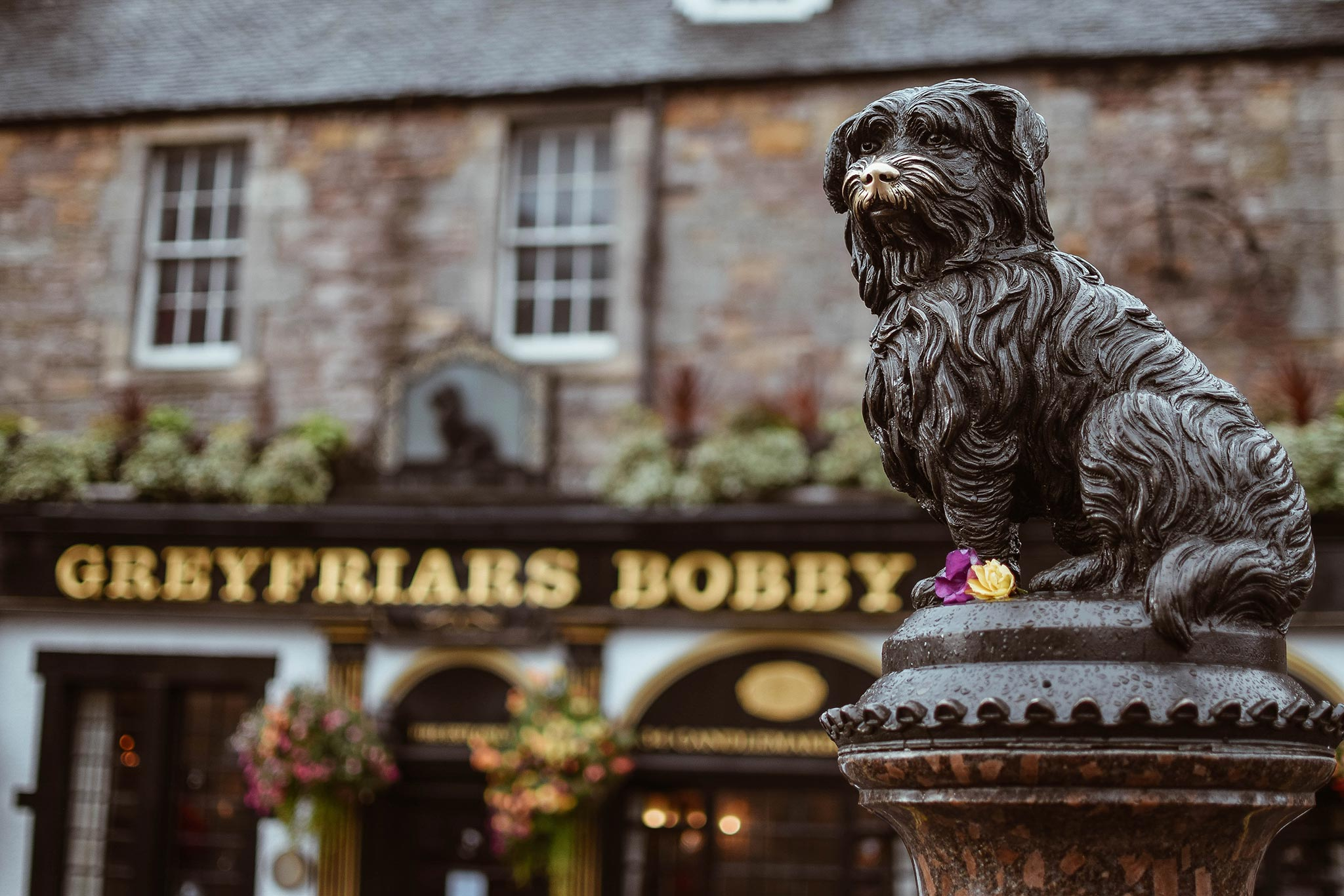 Greyfriars Bobby, kuva: Jamie Wheeler, Unsplash