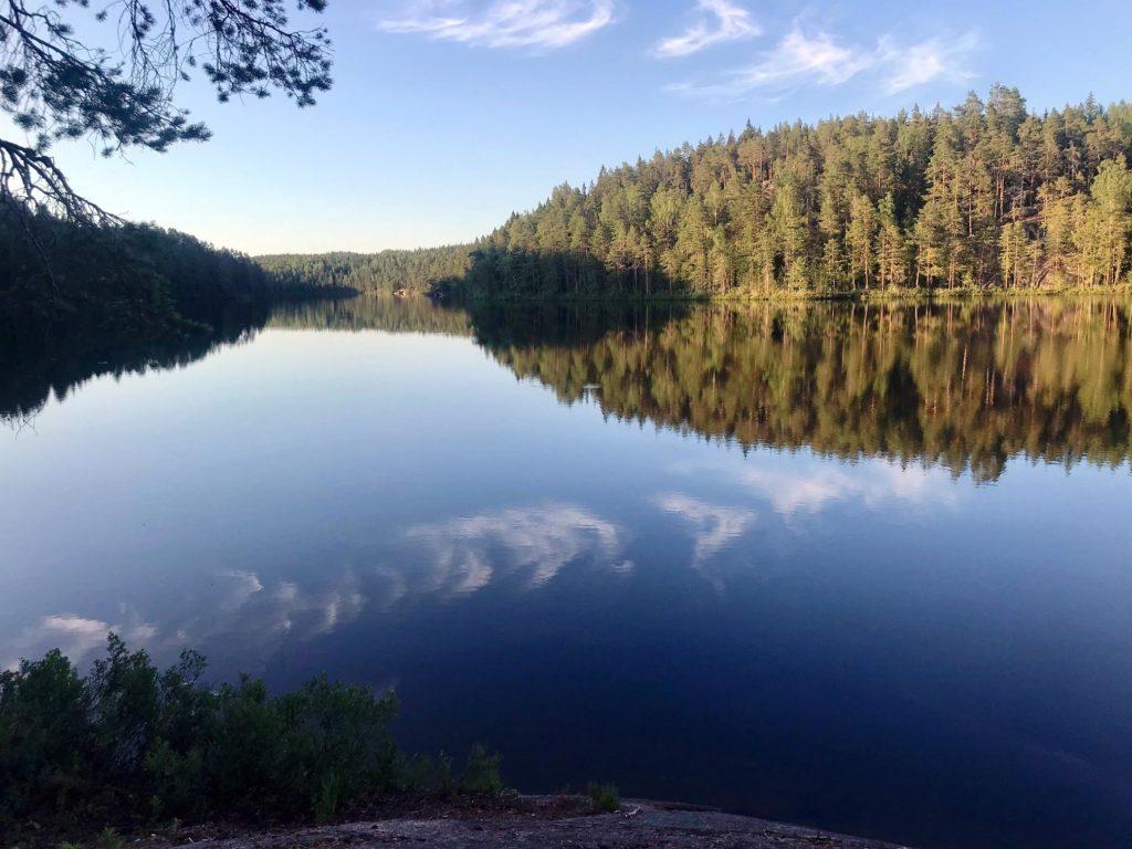 Kaunis Repoveden kansallispuisto.